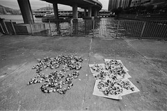 drying peels (a.pierre4840) Tags: olympus om4ti tamron sp adaptall 17mm f35 35mmfilm rollei rolleirpx400 bw blackandwhite noiretblanc harbour hongkong