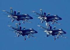 US Navy Blue Angels 2019 Homecoming (RedRipper24) Tags: blueangels acrobaticteams usnavalaviation fighterjets fa18chornet militaryaircraft militaryaviation