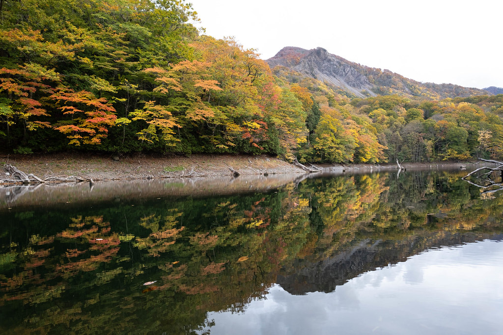 The World S Best Photos Of 十二湖and 白神山地 Flickr Hive Mind