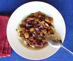 Spicy Veggie Delight (Padmacara) Tags: food stew beans limabeans okra tomato redcabbage chilli savoury vegetarian g11 couscous celery