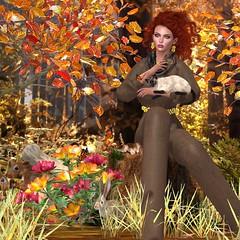 Virtual Diva - Adriana Suit (catsrage17) Tags: virtualdiva bbarbiestyle hethhautecouture miragetreasurecompany luanesworld sculptycreationsanimals analogdog maitreya lelutka glamaffair alaskametro3