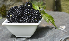 memory of summer (Slávka K) Tags: blackberry fruit fresh light natur fuud healthy stone whitebowl