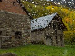A través del cristal (tonygimenez) Tags: sensaciones zuico12100 lluvia cristal paisaje otoño frió agua gotas olympus