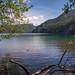 Lake Crescent 6