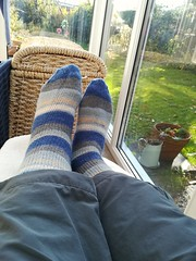 Super Sox Sunday. (daveandlyn1) Tags: socks footwear striped conservatory pralx1 p8lite2017 huaweip8 smartphone cameraphone psdigitalcamera