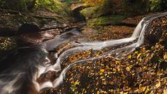 Tributary (www.peterhenryphotography.com) Tags: river streamautumn colour cascade waterfall gelt