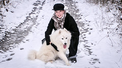 EVA et GINGER (thierrybalint) Tags: lauvergne neige snow hiver winter chien dog samoyede personne thierrybalint famille