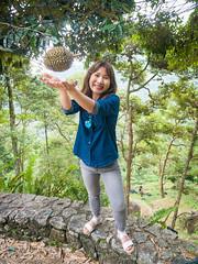 Bao Sheng Durian Farm (wesbran) Tags: malaysia penang