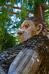 Mama Loumari (Jake (Studio 9265)) Tags: mama loumari forest giant bernheim clermont ky kentucky usa united states america summer 2019 july thomasdambo danish artist recycled wood repurposed display pose close up face resting sculpture tree boards creature