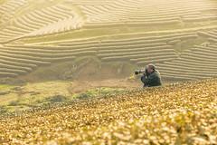 _MG_3916.0311.Tân Lập.Mộc Châu.Sơn La. (hoanglongphoto) Tags: dailylife people men photographersinaction field mountain canon canoneos5dmarkii vietnam sơnla mộcchâu cuộcsống đờithường conngười người đànông nhiếpảnhgia spring mùaxuân asia asian northvietnam northwestvietnam northernvietnam tâybắc photogratpherinvietnam lifeinvietnam nhiếpảnhgiaviệtnam cuộcsốngviệtnam 1people 1người canonef70200mmf28lisiiusm morning sunny sunnymorning morningsunshine buổisáng nắng nắngsớm đồichè tea teahill hoanglongphoto