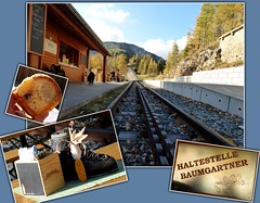 Zahnradbahn am Hochschneeberg / Rack railway on Hochschneeberg (ursula.valtiner) Tags: bahnhof bahnstation station baumgartner salamander buchteln dumplings puchberg schneeberg niederösterreich loweraustria austria autriche österreich rohrnudeln dampfnudeln