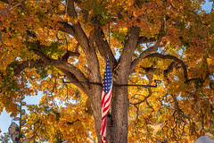 Autumn Glory (larwbuck) Tags: autumn california fall flag objects sky travel