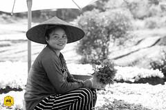 Laotian farmers (Uralistan.roadtrip) Tags: luangprabang laos tradition culture rue voyage travel travelling traveling voyager asia asie asiedusudest southeastasia farmer fermier laotianfarmer fermierlaotien agriculture
