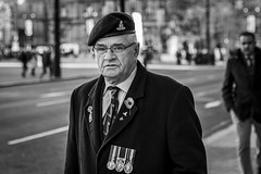 Veteran (Leanne Boulton) Tags: armisticeday remembrance veteran people urban street candid portrait portraiture streetphotography candidstreetphotography candidportrait streetportrait eyecontact candideyecontact streetlife man male face eyes expression mood emotion feeling soldier artillery beret cap badge insignia poppy medals tone texture detail depthoffield bokeh naturallight outdoor light shade city scene human life living humanity society culture lifestyle canon canon5dmkiii 70mm ef2470mmf28liiusm black white blackwhite bw mono blackandwhite monochrome glasgow scotland uk