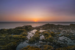 Oregon Tide Pool Sunset (Mike Ver Sprill - Milky Way Mike) Tags: oregon thors well tidepool tide pool low coastline coastal ocean seascape sea rocks rocky travel explore nature landscape beautiful sun horizon mike ver sprill michael versprill