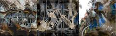 Windows (seguicollar) Tags: art arte artedigital texturas virginiaseguí imagencreativa photomanipulation filterforge ventanas windows arquitecturas barcelona