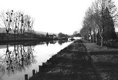 Canal de Bourgogne à Tonnerre (stéphanehébert) Tags: canal tonnerre konica ir750 bourgogne pentax z1 infrarouge infrared