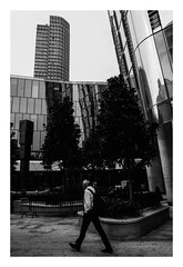 FILM - Verticals (fishyfish_arcade) Tags: 35mm 800asa acros analogphotography bw blackwhite blackandwhite filmphotography filmisnotdead fujifilm istillshootfilm london monochrome olympusom1 zuiko28mmf35 analogcamera film mono pushed streetphotography