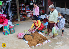 Local market of Nongkhiaw, Laos (Uralistan.roadtrip) Tags: laos tradition culture voyage travel travelling traveling voyager asia asie asiedusudest southeastasia market localmarket marché marchélocal nongkhiaw countryside campagne rural tabac
