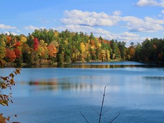 Day 16 - Returning to Calgary from Halifax, with a stopover in Ottawa - Pink Lake,   Gatineau Hills (benlarhome) Tags: ottawa gatineau ontario quebec canada autumn fall
