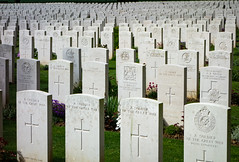 Armistice Day/ Veterans Day (Bill Bowman) Tags: wwi headstones veteransday armisticeday britishsoldiers battleofthesomme delvillewoods longuevalfrance