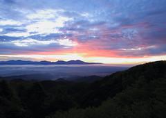 at Utsukushigahara Highland in Nagano prefecture(June 19, 2018) (yasushiinanaga) Tags: landscape sunpillar sunrise dawn seaofclouds mountain cloud natuer outside canoneos6d ef2470mmf4lisusm 24mm