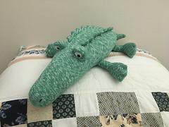 Gator (SReed99342) Tags: alligator stuffed toy moms florida jacksonville