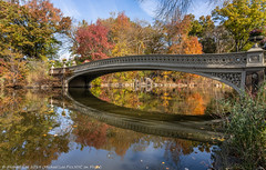 Bow Bridge (20191109-DSC08728) (Michael.Lee.Pics.NYC) Tags: newyork centralpark bowbridge lake reflection autumn fall foliage trees bridge architecture landscape sony a7rm4 fe24105mmf4g