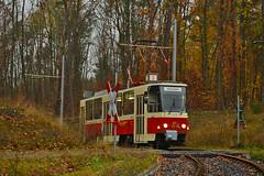 Tatra T6A2 #226_001-2 DVB Straßenbahnmuseum Dresden Drezno (3x105Na) Tags: tatra t6a2 2260012 dvb strasenbahnmuseum dresden drezno deutschland strassenbahn strasenbahn tram tramwaj germany niemcy sachsen saksonia gleisschleife sonderfahrt