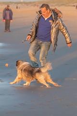 _MG_0391 (Iris Harm Fotografie) Tags: harm hond iris beach bird birds buiten den denhaag dog dogs fotografie graffiti grieksegod haag honden irisharmfotografienl kijkduin outdoor photography sea seal sealion strand sun sundown vogel vogels water zand zee zeeleeuw zon zonsondergang