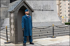 On Guard at the National War Memorial (Dan Dewan) Tags: dandewan warmemorial people canon fall guard colour portrait hat man ottawa ontario sunday sigmadc1750mm128exhsm poppy nationalwarmemorial cenotaph canoneos7dmarkii canada soldier 2019 november military