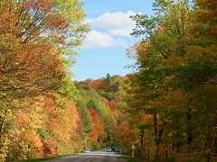 Day 16 - Returning to Calgary from Halifax, with a stopover in Ottawa -  Driving in the Gatineau Hills (benlarhome) Tags: ottawa gatineau ontario quebec canada autumn fall