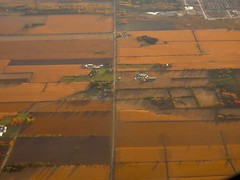 Day 16 - Returning to Calgary from Halifax, with a stopover in Ottawa -  Ontario farmlands from the air (benlarhome) Tags: ottawa gatineau ontario quebec canada autumn fall