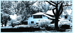 House (Semplice e cantabile) Tags: chicago suburbs home house architecture landscape trees