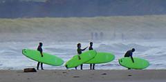 Belhaven Boards (Brian Cairns) Tags: brianbcairns dunbar ncn76sustrans johnmuirway