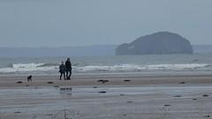 Bass Rock and Belhaven Bay (Brian Cairns) Tags: brianbcairns dunbar ncn76sustrans johnmuirway