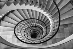 Hamburg Stairs (michael_hamburg69) Tags: hamburg germany deutschland hansestadt stair stairs stairway treppenhaus stairwell steps escalier escala escalera ле́стница rampa scala helical spiral 50s detjenhaus kontorhaus kajen68 19531956 ottoparadowski architekt nachkriegsmoderne friedrichadetjen reederei unterwegsmitelbmaedchen unterwegsmitjutta