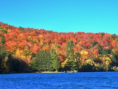Day 16 - Returning to Calgary from Halifax, with a stopover in Ottawa - Meech Lake colours (benlarhome) Tags: ottawa gatineau ontario quebec canada autumn fall