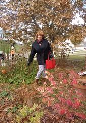 """Once Again, I Fail At """"Blending"""" (Laurette Victoria) Tags: autumn fallcolors woman laurette purse leggings coat gloves boots"""