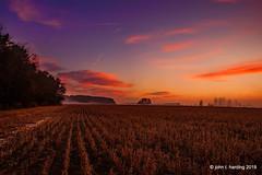 A Soybean Field at Dawn (T i s d a l e) Tags: tisdale asoybeanfieldatdawn daybreak dawn clouds soybeans rows field farmautumn fall december 2017 senorthcarolina