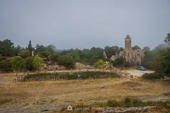 Hay visita (SantiMB.Photos) Tags: 2blog 2tumblr 2ig lamussara vilaplana tarragona verano summer baixcamp niebla mist coche car cataluna españa