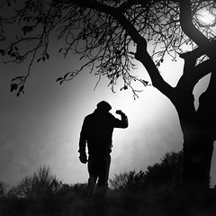 autumn mood (heinzkren) Tags: street blackandwhite monochrome noiretblanc schwarzweis candyd biancoetnero sun man tree nature fog mystery nebel magic streetphotography human mann sonne baum canon eosr austria geras silhouette atmosphere mood adventure square clouds