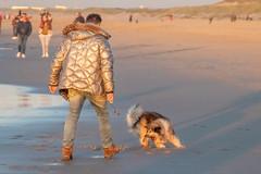 _MG_0401 (Iris Harm Fotografie) Tags: harm hond iris beach bird birds buiten den denhaag dog dogs fotografie graffiti grieksegod haag honden irisharmfotografienl kijkduin outdoor photography sea seal sealion strand sun sundown vogel vogels water zand zee zeeleeuw zon zonsondergang