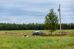 Disappearing Farmstead (Bracus Triticum) Tags: disappearing farmstead アルバータ州 alberta canada カナダ 8月 八月 葉月 hachigatsu hazuki leafmonth 2019 reiwa summer august