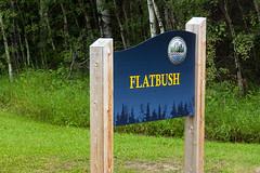 Flatbush Sign (Bracus Triticum) Tags: flatbush sign アルバータ州 alberta canada カナダ 8月 八月 葉月 hachigatsu hazuki leafmonth 2019 reiwa summer august