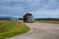 Log Truck (Bracus Triticum) Tags: log truck transportation アルバータ州 alberta canada カナダ 8月 八月 葉月 hachigatsu hazuki leafmonth 2019 reiwa summer august