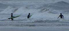 Brave at Belhaven (Brian Cairns) Tags: brianbcairns dunbar ncn76sustrans johnmuirway