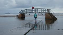 Bass Rock & Biel Bridge (Brian Cairns) Tags: brianbcairns dunbar ncn76sustrans johnmuirway