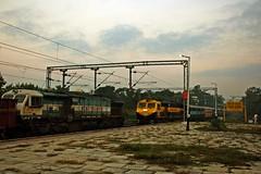JP - SC Exp. (BV Ashok) Tags: nwr 19713 jpsc express weekly jaipursecunderabad cvb cavalrybarracks scr nr tkd tughlakabad wdg4d 70873 emd nfr siliguri sguj wdg4 12173 boxn