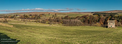 Ettersgill to Bowlees from Holwick Panorama Nov 2019 (Richard Laidler) Tags: aonb agriculture areaofoutstandingnaturalbeauty autumn autumncolour autumncolours autumntints barn bluesky bowlees bright buildings clear countydurham ettersgill fall farmland farms fine globalgeopark hillfarms hills landscape lateautumn meadow meadows moor moorland moors northeastengland northpennines northpenninesaonb panorama panoramic pasture pastures pennine pennineway penninewaylongdistancefootpath sunny sunshine teesdale teesdalelandscape upperteesdale whitewashed